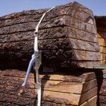 carico di tronchi messi in sicurezza tramite regge